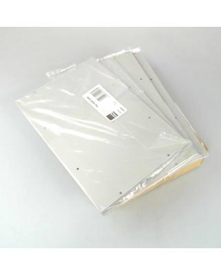 RITTAL Montageplatte PK 9550.000 (4Stk.) OVP
